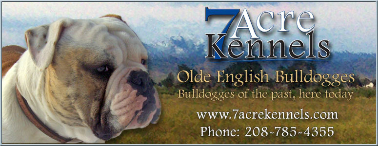 7 Acre Kennels